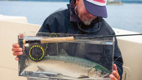 seattle fishing gallery11